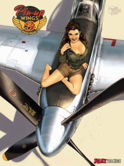 Pin-Up Wings 3